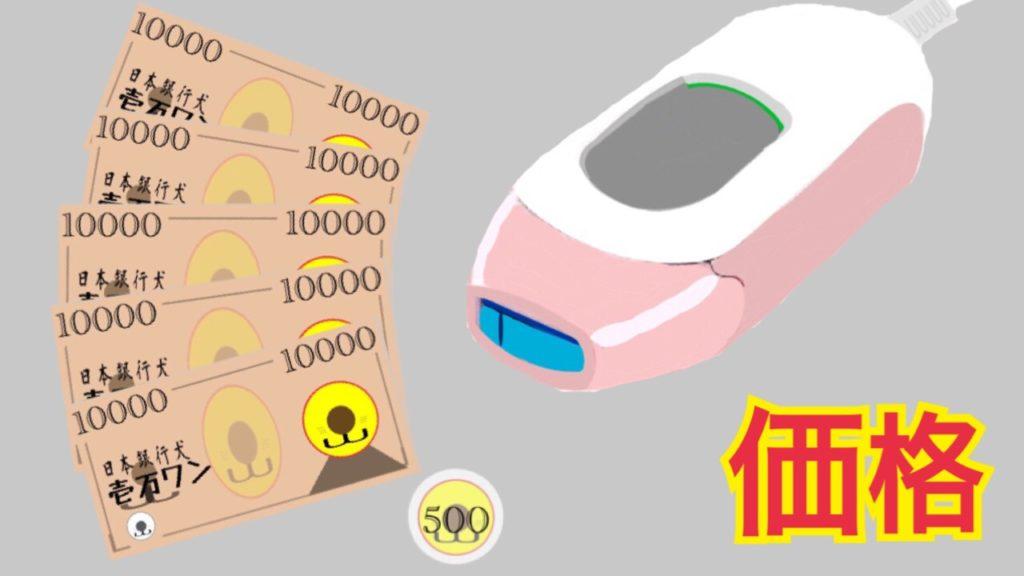 ドクターエルミスゼロの価格-口コミ・効果・VIOへの使い方